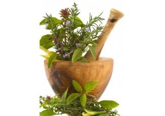 Растения в  сухом виде : череда +  пикульник + лабазник + яснотка, дикорастущие растения   Беларуси, купить.