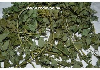Астрагал солодколистный, шерстистоцветковый, сухая трава, есть в наличии.