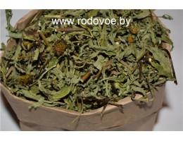 Череда,  лист, стебель, лист, стебель, цветущие верхушки в  сухом виде , Беларусь,, дикорастущие растения Беларуси,  купить.