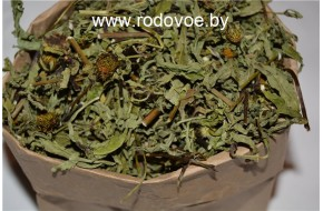Череда трехраздельная, трава череды, купить, вес 100 гр.