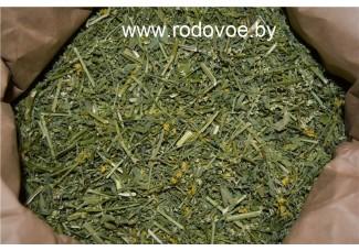Донник желтый, лекарственный , лист, стебель, цветущие верхушки,  дикорастущие растение   Беларуси, купить.