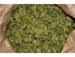 Граб , купить, лист граба, молодые побеги,  растение (травы) Беларуси в сухом виде ( бесплатная доставка).