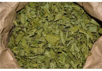 Грецкого  ореха лист.