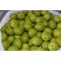 Грецкие зеленые орехи молочной спелости, бесплатная доставка, есть в наличии.