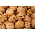 Грецкие орехи( не очищенные), зеленые орехи молочной спелости, купить, бесплатная доставка.