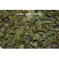 Кипрей (иван-чай) + лабазник + малина + репешок + астрагал + смородина + вереск + чабрец, дикорастущие травы.