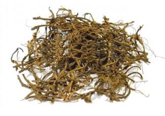 Травы: копытень  европейский, корень, есть в наличии.