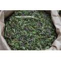 Иван - чай (кипрей узколистный), зеленый, цветущие верхушки.