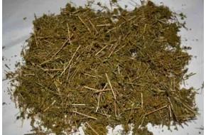 Подмаренник желтый, обыкновенный, подмаренник цепкий, трава