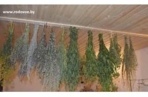 3. Травы и растения в наличии.