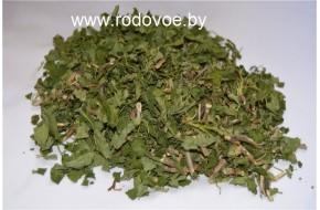 Смородины лист, м. побеги, купить, вес 100 гр.