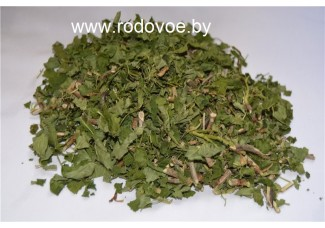 Смородина, лист,м. побеги, сухая трава, есть в наличии.
