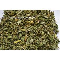 Лабазник , таволга  ,лист, стебель, цветущие верхушки,  дикорастущие растение Беларуси, купить.