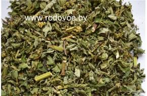 Таволга вязолистная, лабазник, трава, купить, вес 100 гр.