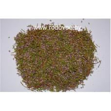 Вереск , купить,  лист, цвет, дикорастущие растение Беларуси.