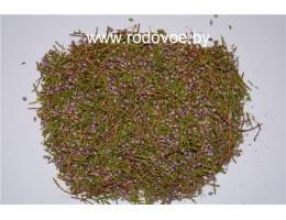 Вереск , купить,  лист, цвет,  растение (травы)Беларуси в сухом виде ( бесплатная доставка).
