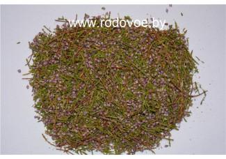 Вереск , купить,  лист, цвет, дикорастущие  растение Беларуси в сухом виде,